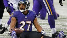 Ray Rice will be removed from Madden NFL 15 for punching his wife