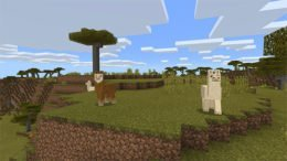 Minecraft Discovery Update Heads Out to Windows 10
