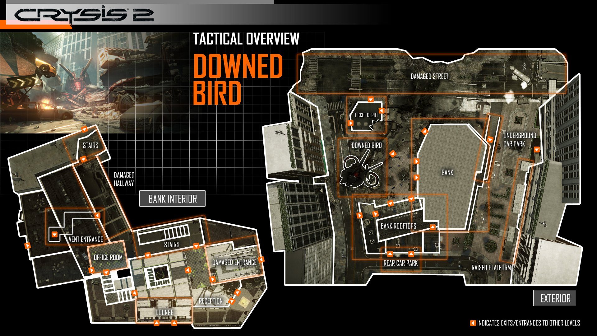 Downed_Bird_Tactical_Overview