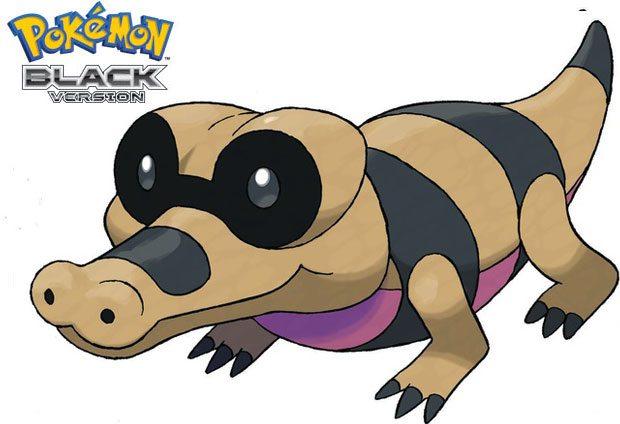 New Pokemon Black Screens