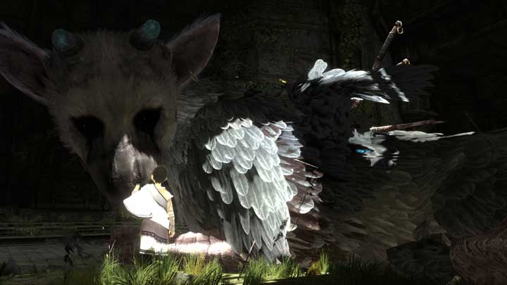 The Last Guardian Has Been Delayed For Quality Issues News  The Last Guardian