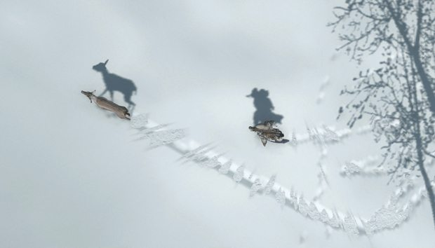 On the hunt in Assassin's Creed III