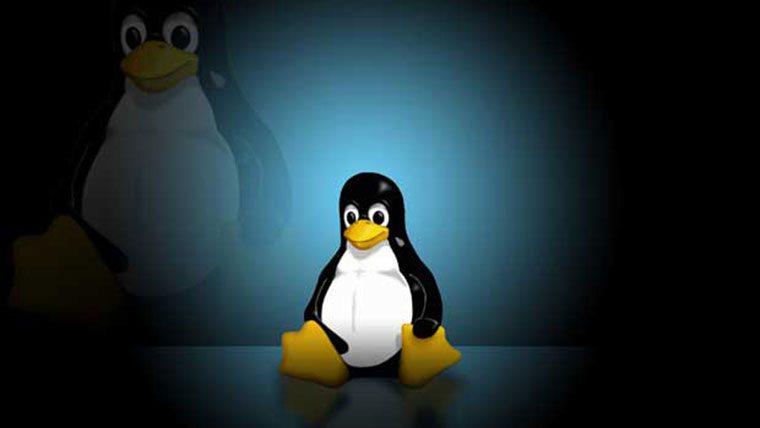dice-linux