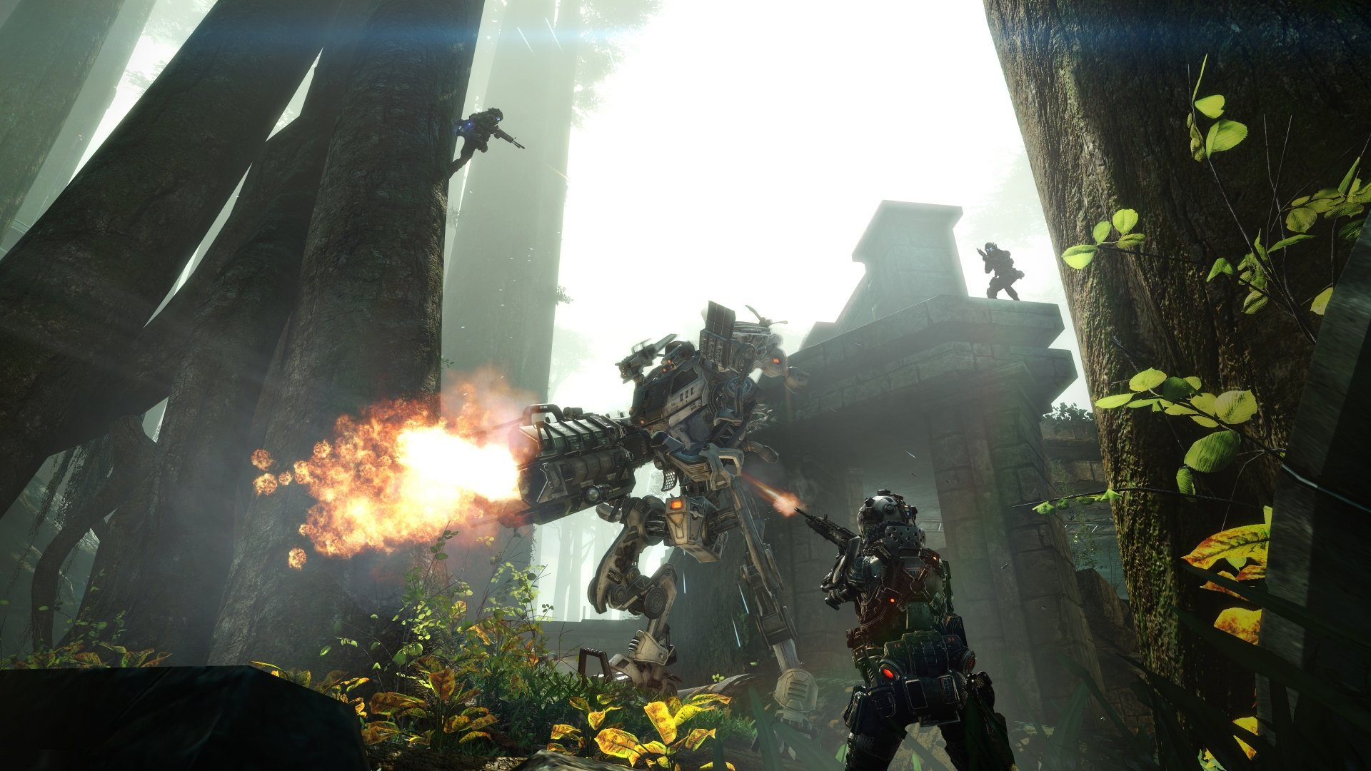 Titanfall-Expedition-Swamplands-1