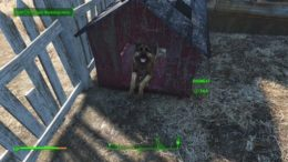 Fallout 4 Where to Find Dogmeat