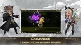Bravely Second Catmancer Guide