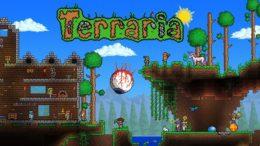 Terraria Wii U