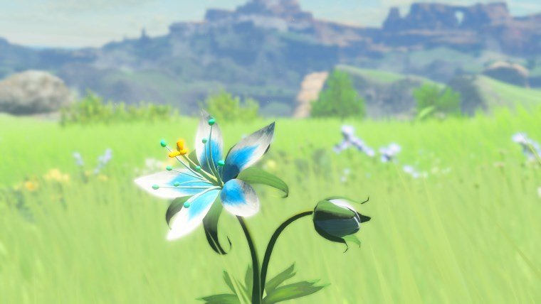the-legend-of-zelda-breath-of-the-wild-review4