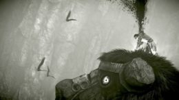 Shadow of the Colossus PS4 Guide: How to Increase Stamina