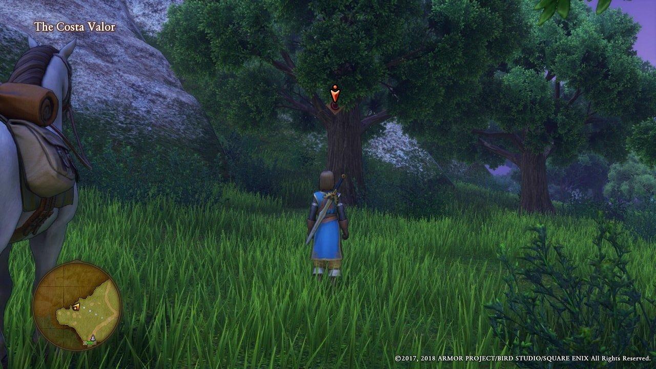 Dragon-Quest-XI-The-Costa-Valor-5-1-min
