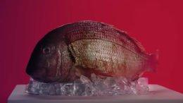 Hitman 2 - Launch Trailer Fish