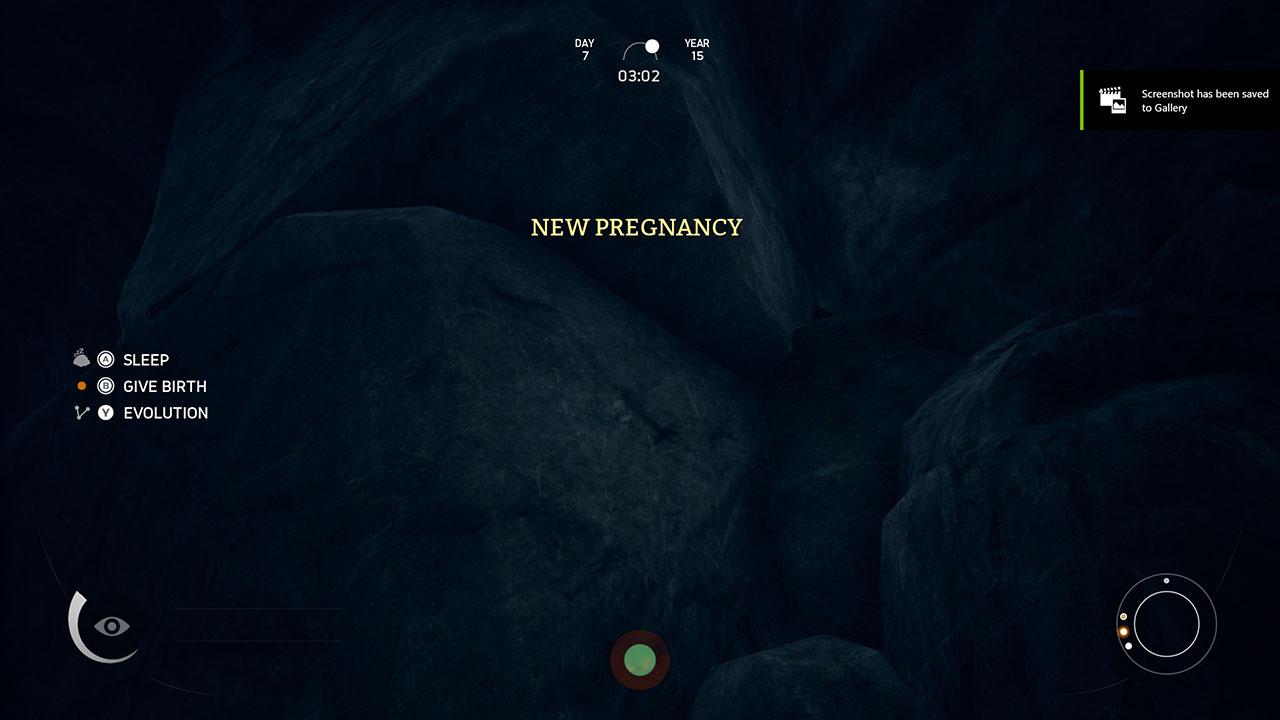 new-pregnancy