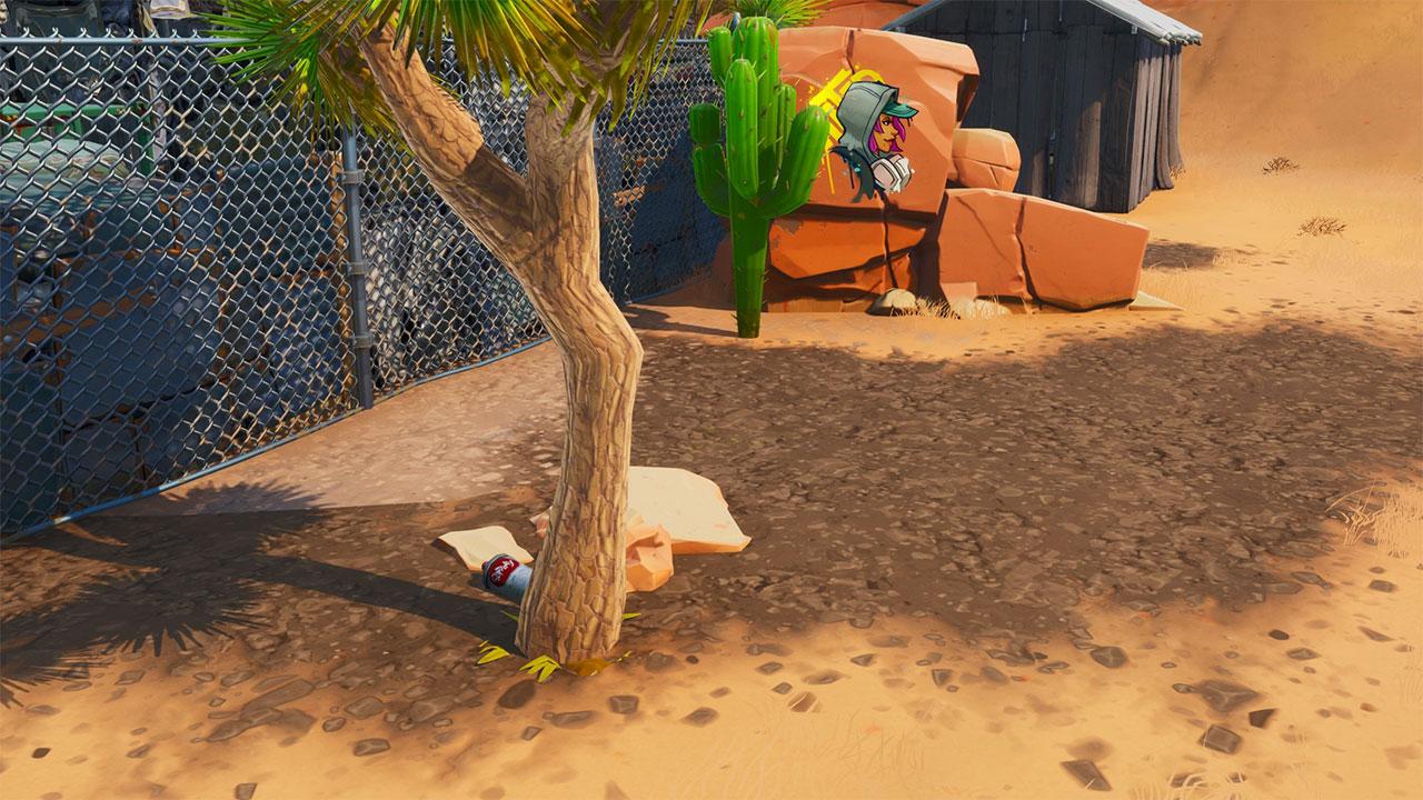 paradise-palms