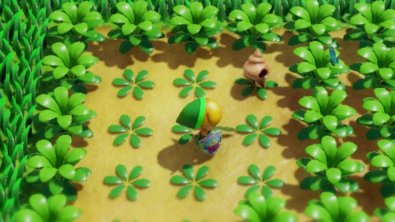 Legend Of Zelda Link S Awakening What To Do With Secret