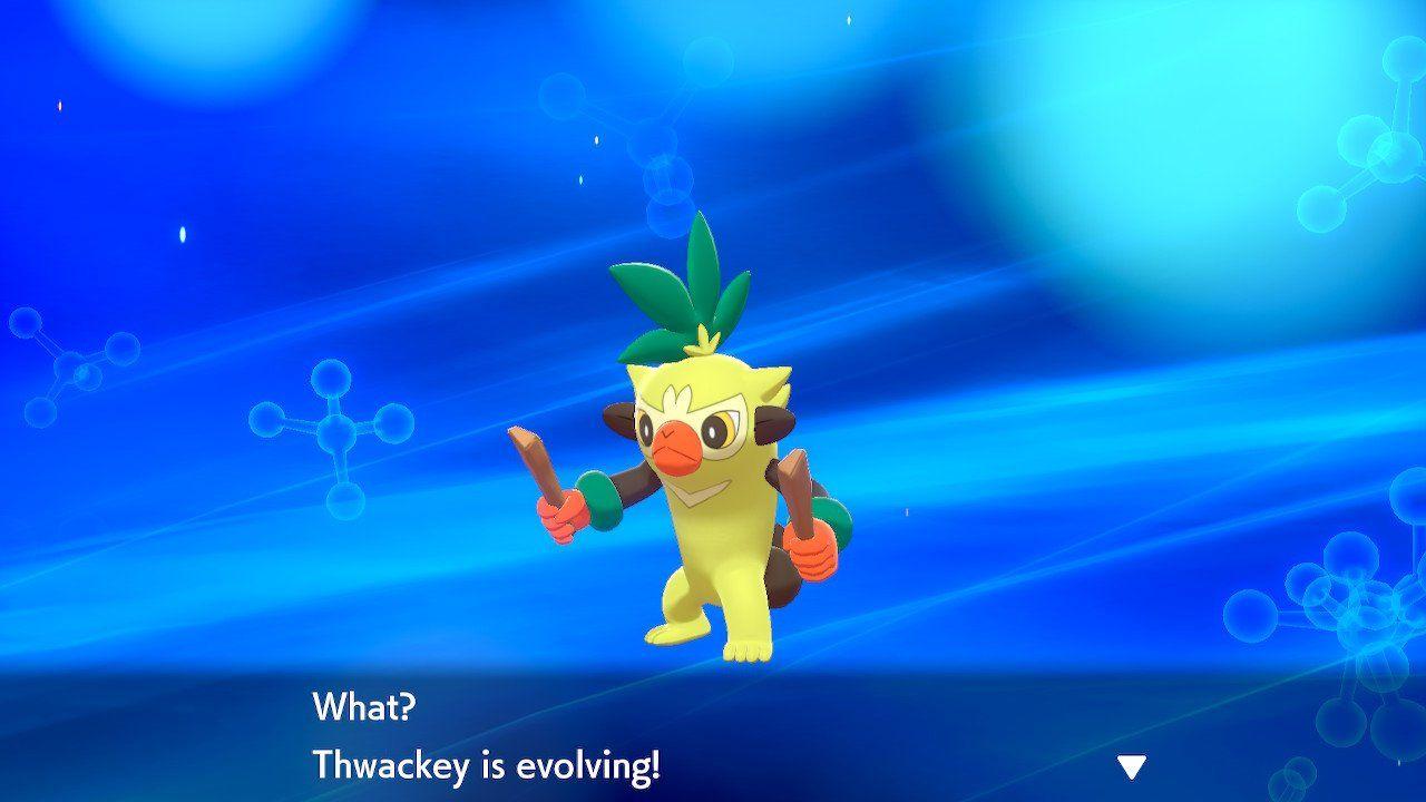 pokemon-sword-and-shield-28