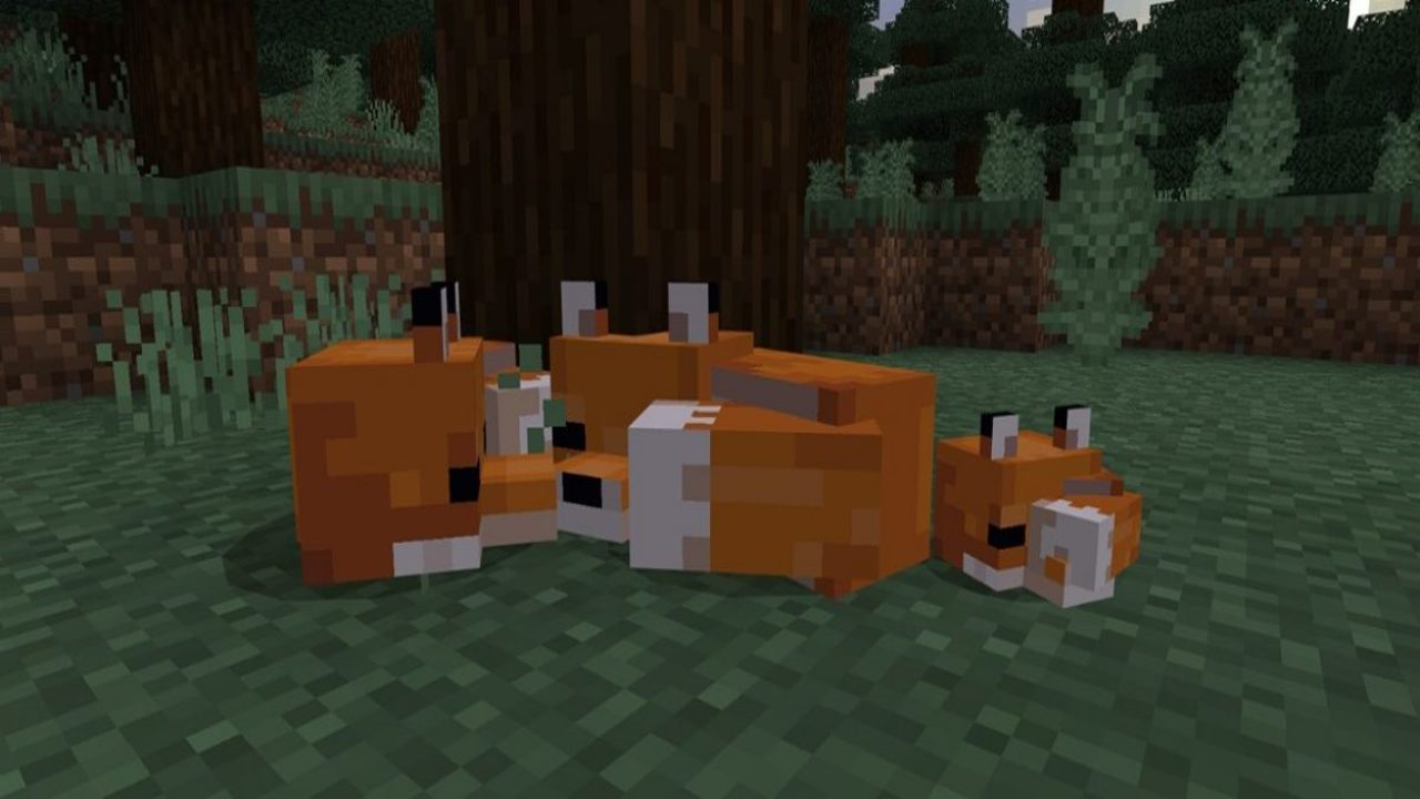 Minecraft-Foxes