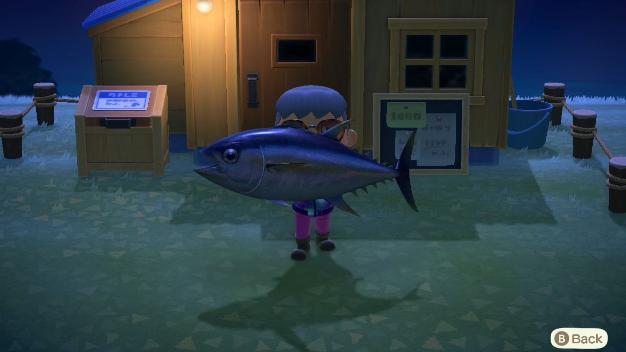 Animal-Crossing-New-Horizons-How-to-Catch-Rare-Fish
