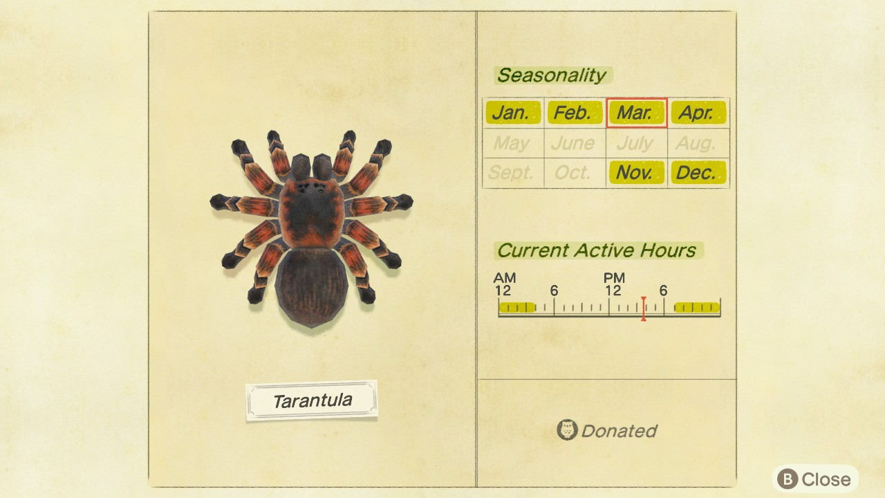 Animal-Crossing-New-Horizons-How-to-Catch-Tarantula