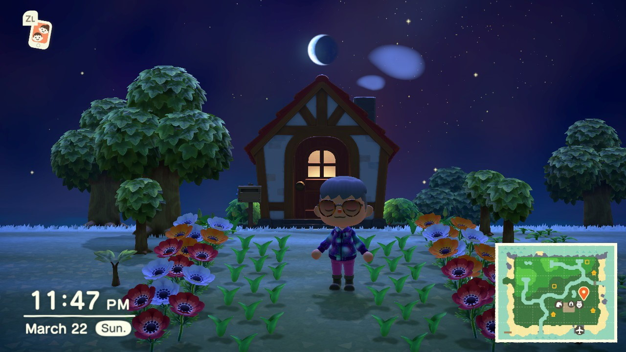 Animal Crossing New Horizons What To Do With Flowers Attack