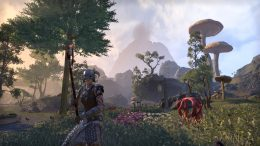 The Three Best Tips for New Players in The Elder Scrolls Online
