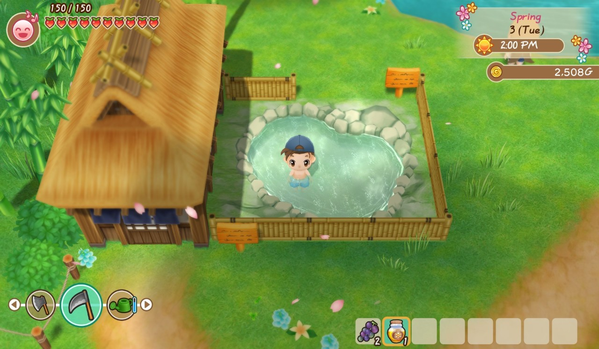fomt-hot-springs