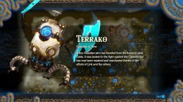 Hyrule Warriors Age of Calamity Terrako