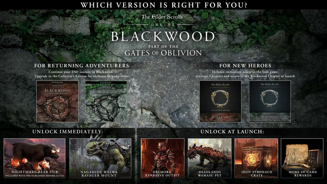 eso-blackwood-preorder-guide