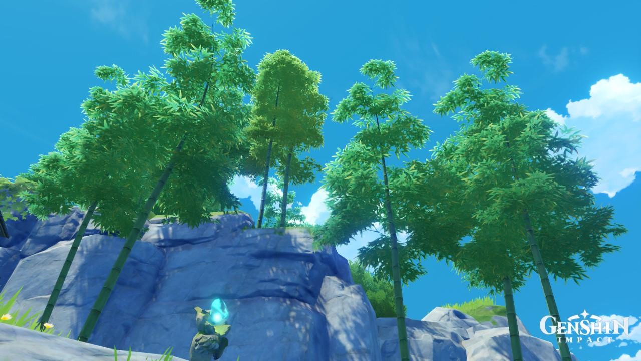 genshin-impact-bamboo-segment