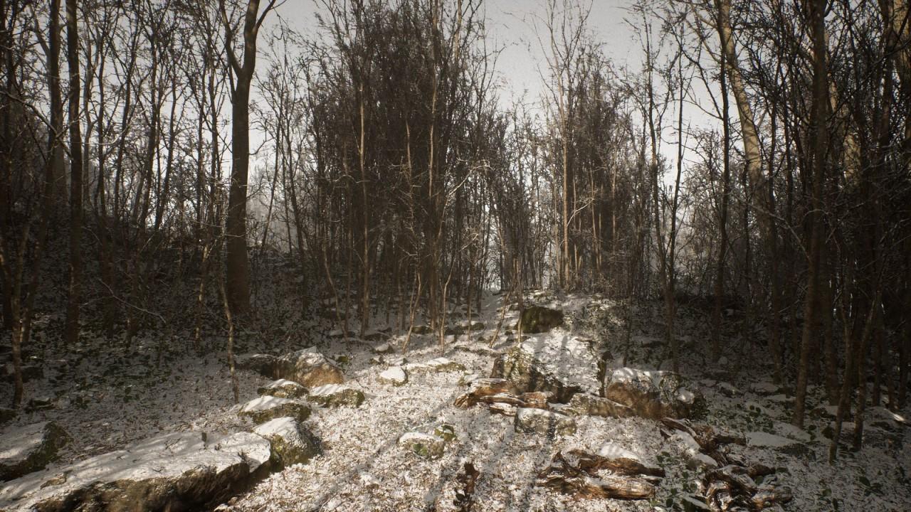 abandoned-PS5-app-screenshot-of-woods