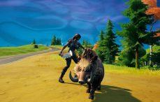 Fornite Boar taming